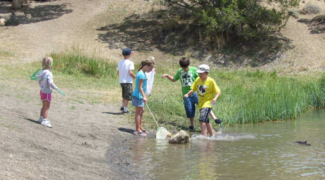 Wading along the shore of Cave Lake at the Great Basin Kids Workshop