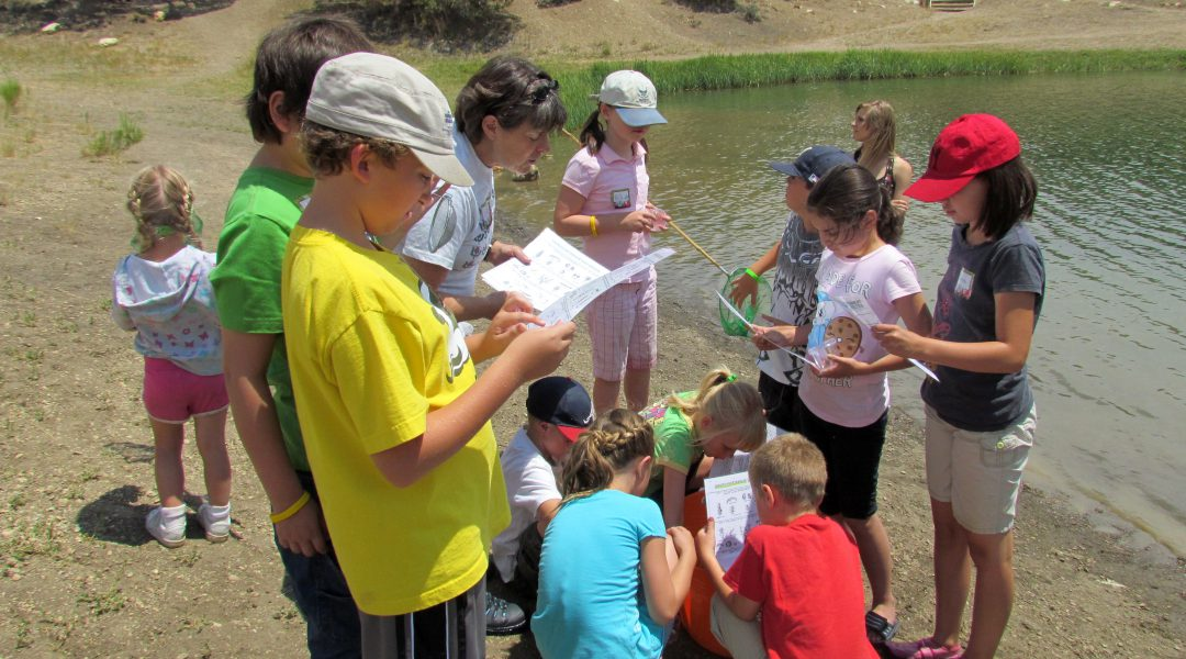 Exploring biodiversity and indicator species at Cave Lake