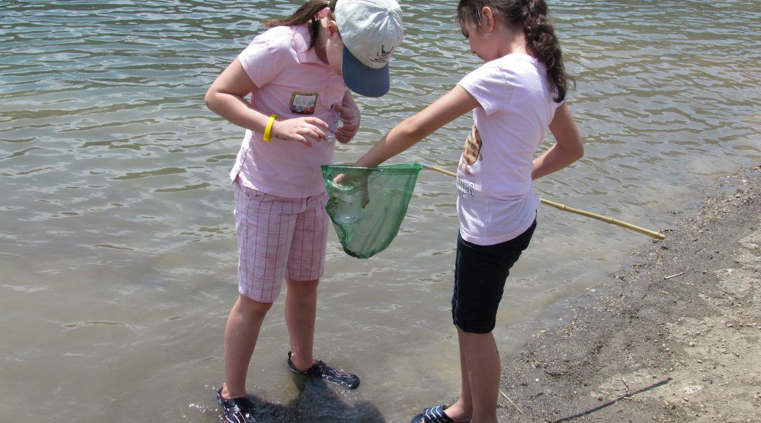Girls inspiecting critters in net alongside Cave Lake shore at Great Basin Kids Workshop