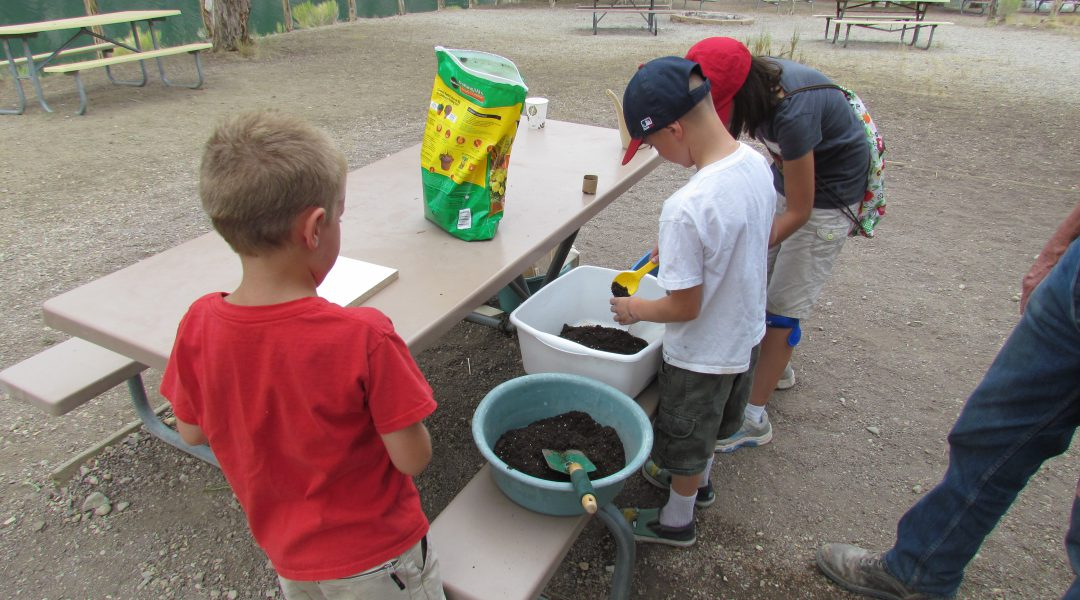 Soils experiment at the Great Basin Kids Workshop