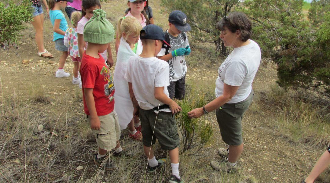 Kids taking a short hike at the Great Basin Kids Workshop